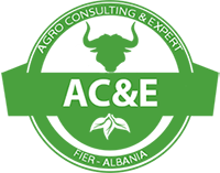 ace_logo-final-web