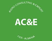 ace_logo-final-web